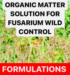 ORGANIC MATTER SOLUTION FOR FUSARIUM WILD CONTROL FORMULATIONS AND PRODUCTION PROCESS