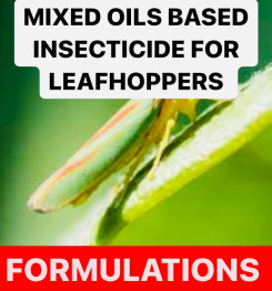 MIXED OILS BASED INSECTICIDE FOR LEAFHOPPERS FORMULATIONS AND PRODUCTION PROCESS