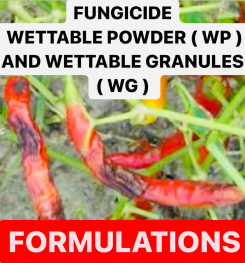 FUNGICIDE WETTABLE POWDER ( WP ) AND WETTABLE GRANULES ( WG ) FORMULATIONS AND PRODCUTION PROCESS
