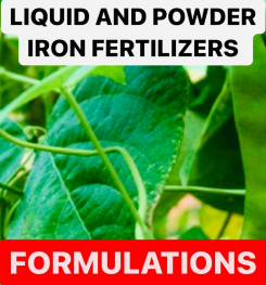 LIQUID AND POWDER IRON FERTILIZERS FORMULATIONS AND PRODUCTION PROCESS