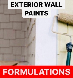 EXTERIOR WALL PAINTS FORMULATIONS AND PRODUCTION PROCESS