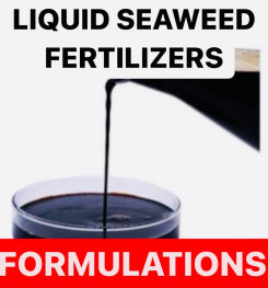LIQUID SEAWEED FERTILIZERS FORMULATIONS AND PRODUCTION PROCESS