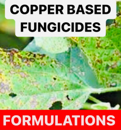 COPPER BASED FUNGICIDES FORMULATIONS AND PRODUCTION PROCESS