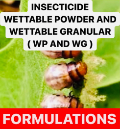 INSECTICIDE WETTABLE POWDER AND WETTABLE GRANULAR ( WP AND WG ) PESTICIDES FORMULATIONS AND PRODUCTION PROCESSES